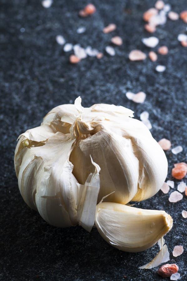 Vitlökkula och kryddnejlika royaltyfria bilder