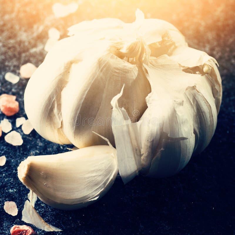 Vitlökkula och kryddnejlika fotografering för bildbyråer