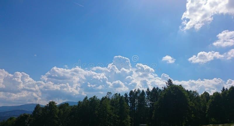 Vitmoln som omges av frodiga tr?d mot en h?rlig klar himmel arkivbilder