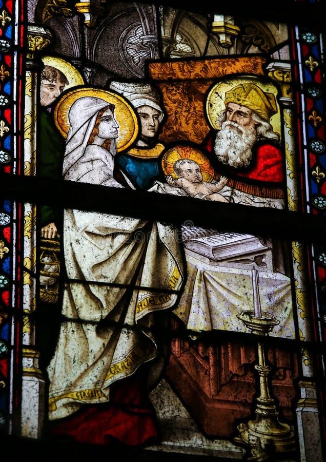 Vitral - la presentación de Jesús en el templo imágenes de archivo libres de regalías