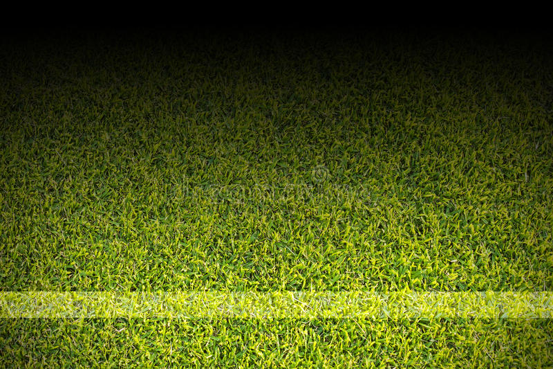Vitremsor på fotbollfält royaltyfria bilder