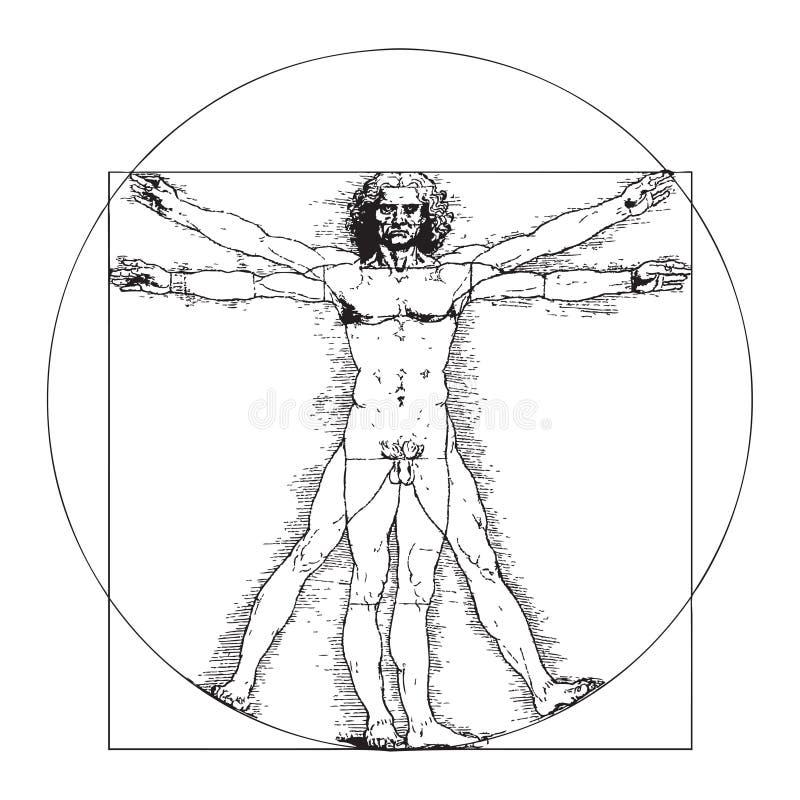 Vitruvian人列奥纳多・达・芬奇 皇族释放例证