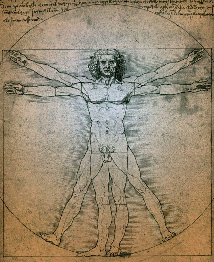 Vitruvian人- Leonardo Da Vinci 皇族释放例证