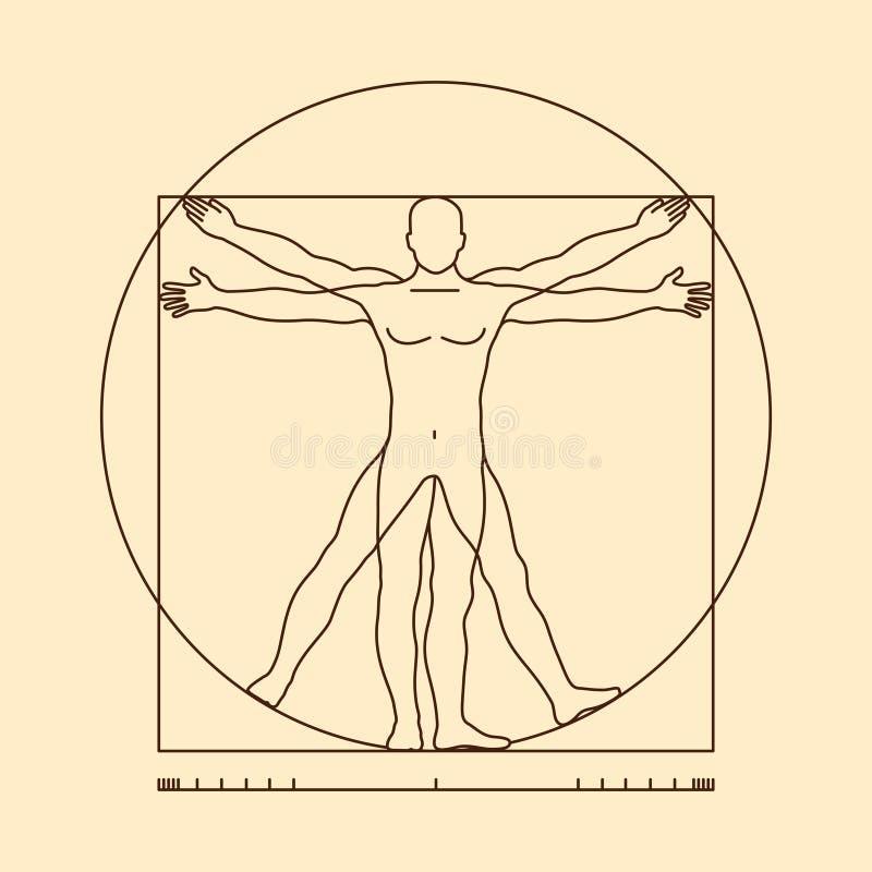 Vitruvian de mensen vectorillustratie van Leonardo da Vinci vector illustratie