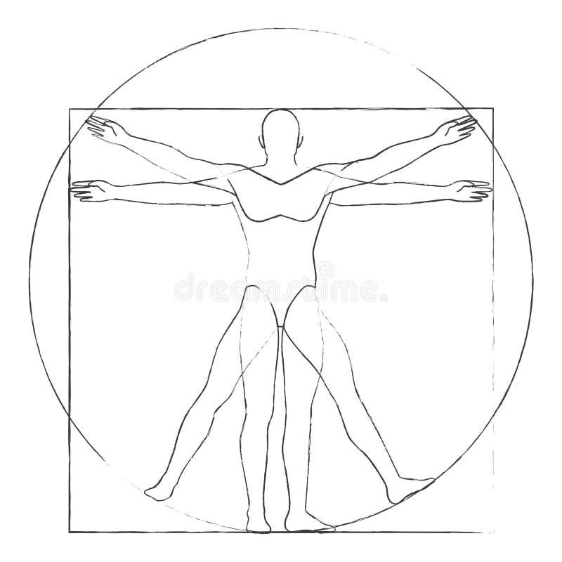 Vitruvian mężczyzna rysunkowy wektor ilustracja wektor
