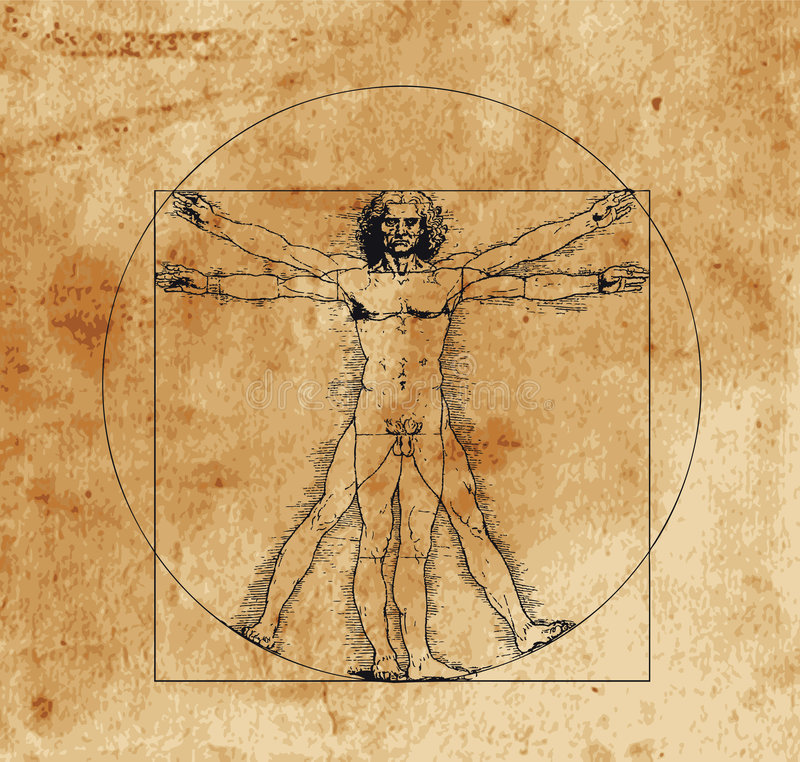 vitruvian man vektor illustrationer