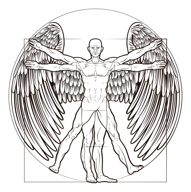 Vitruvian Man Angel. Figure like Leonard Da Vinci s anatomy illustration with wings vector illustration