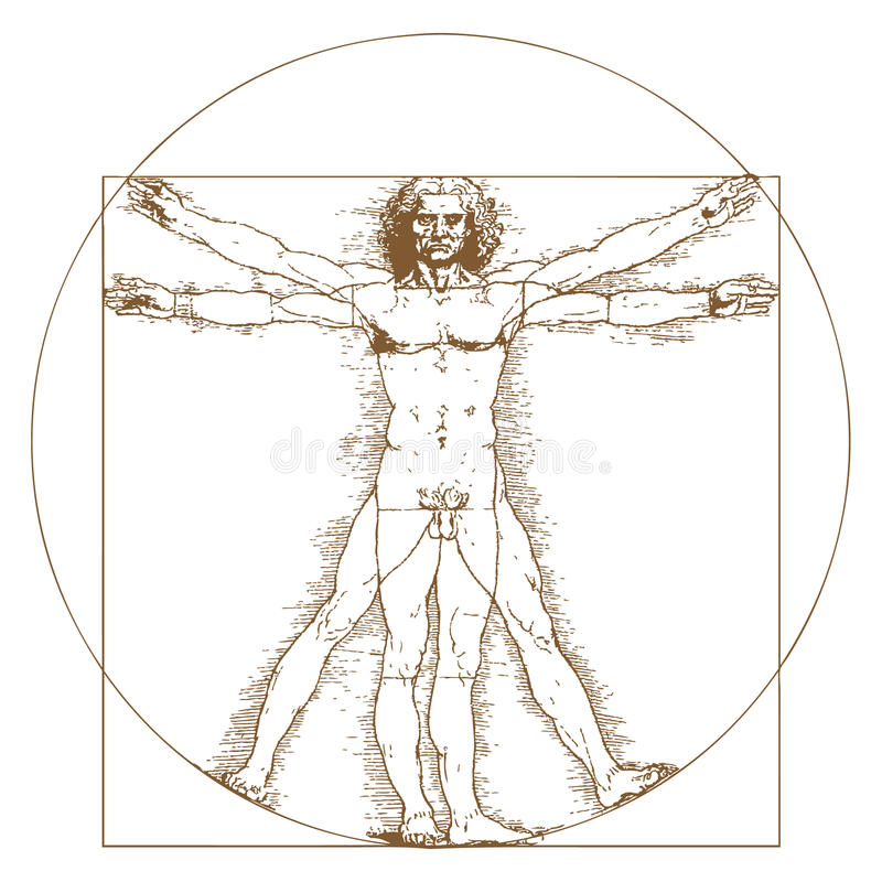 Vitruvian man av Leonardo Da Vinci vektor illustrationer