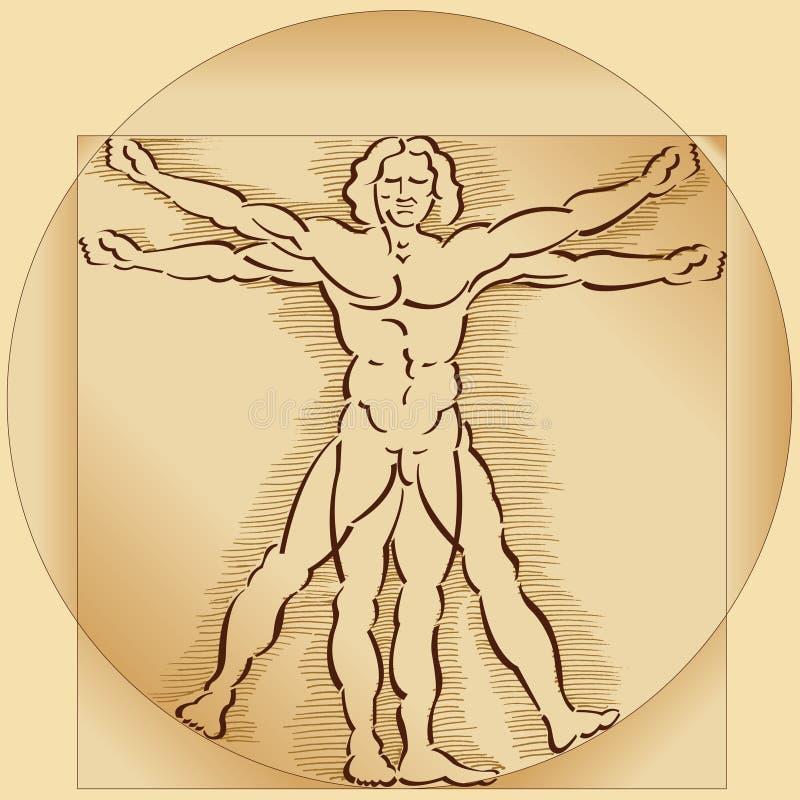 Vitruvian Man Model stock illustration