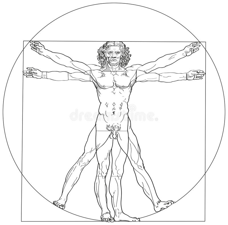 Vitruvianmens Leonardo da Vinci royalty-vrije illustratie
