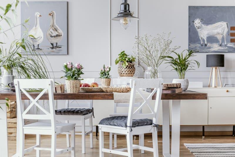 Vitstolar på trätabellen med blommor i matsalinre med affischer och lampan Verkligt foto arkivbilder