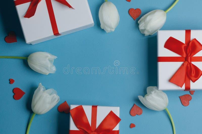 Vitt gåvkort för tulips-hjärtan royaltyfria bilder