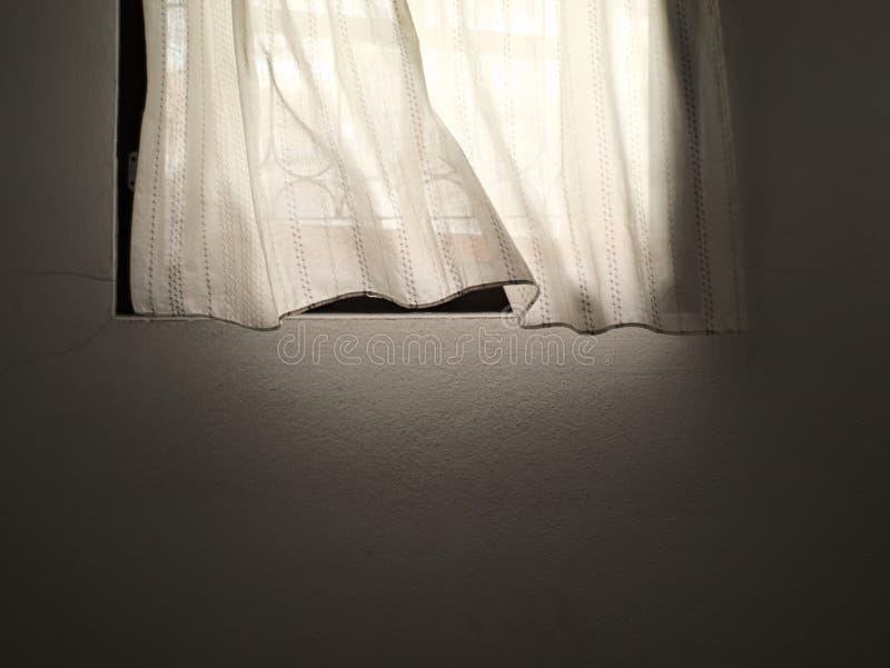 Vitt gardin och fönster royaltyfri bild