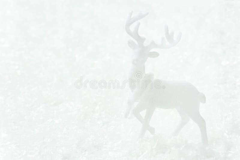 Vitt hjortanseende i plats för vinter för snöskog magisk Baner för affisch för kort för hälsning för nytt år för jul i monokrom m fotografering för bildbyråer