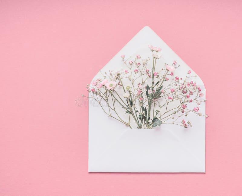 Vitt kuvert med små Gypsophilablommor på pastellfärgad rosa bakgrund, bästa sikt med kopieringsutrymme fotografering för bildbyråer