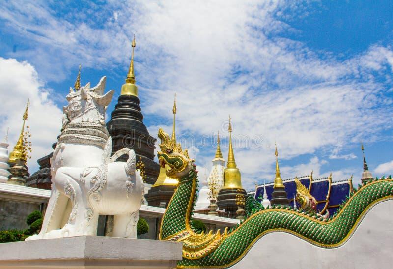 Vitt lejon och naga som bevakar pagoden, Chiang Mai arkivfoton