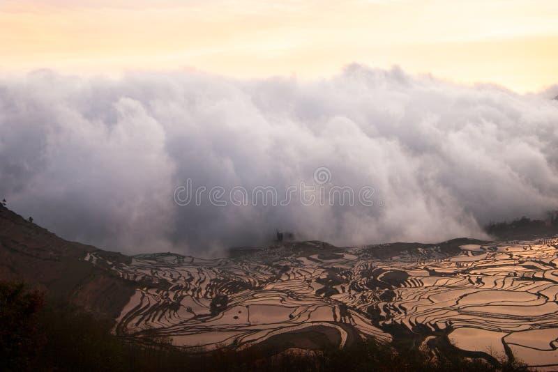 Vitt moln av mist som skriver in och täcker ett risfältlandskap i en dal mellan berg på solnedgången royaltyfri bild
