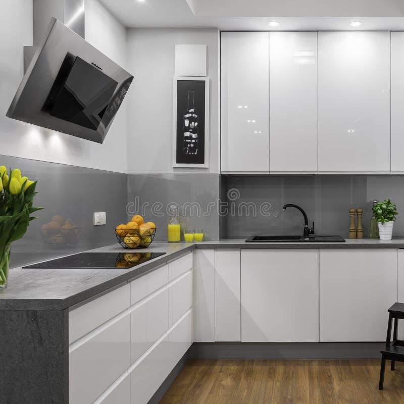 Vitt och grått kök royaltyfria foton
