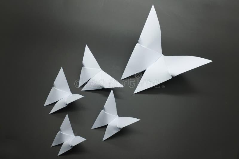 Vitt origamifjärilspapper royaltyfri bild