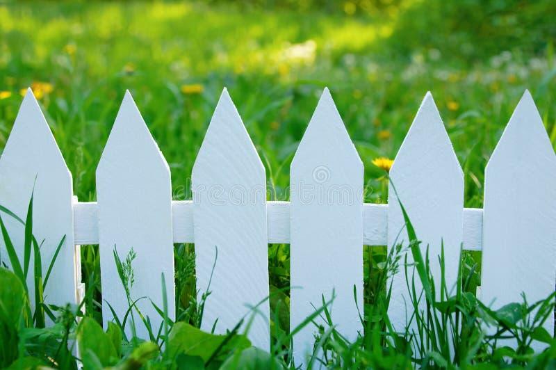 Vitt staket på en bakgrund av grönt gräs arkivbild