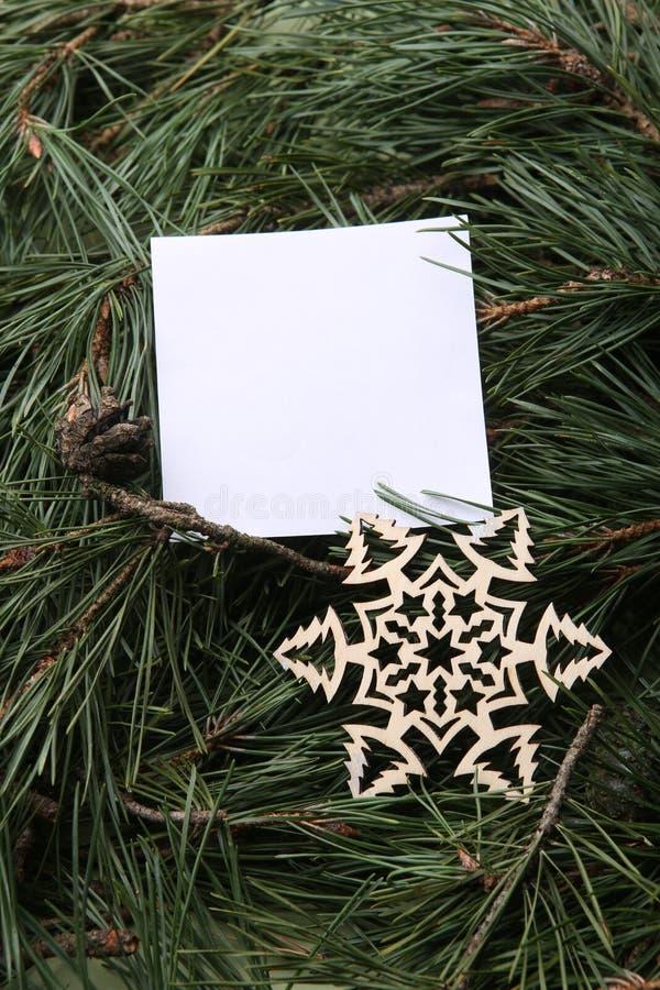 Vitt töm ramen, och den dekorativa snöflingan på gräsplan sörjer filialbakgrund arkivfoton