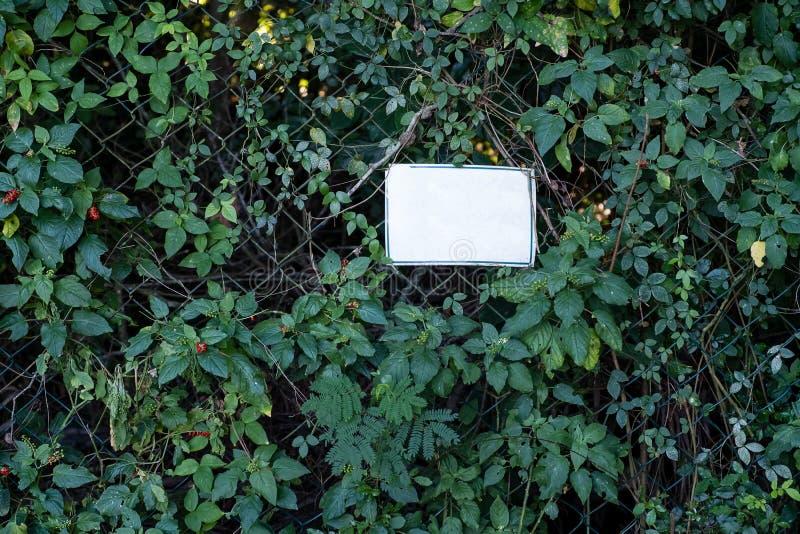 vitt tecken för tomt medel på det metalliska staketet som täckas med vegetation royaltyfria foton