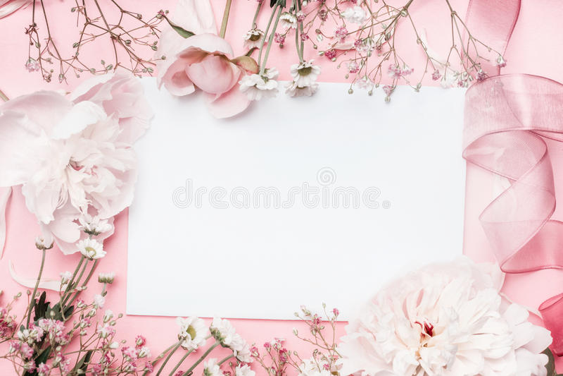 Vitt tomt kort med pastellblommor och band på rosa blek bakgrund, blom- ram Idérik hälsning, inbjudan arkivfoton