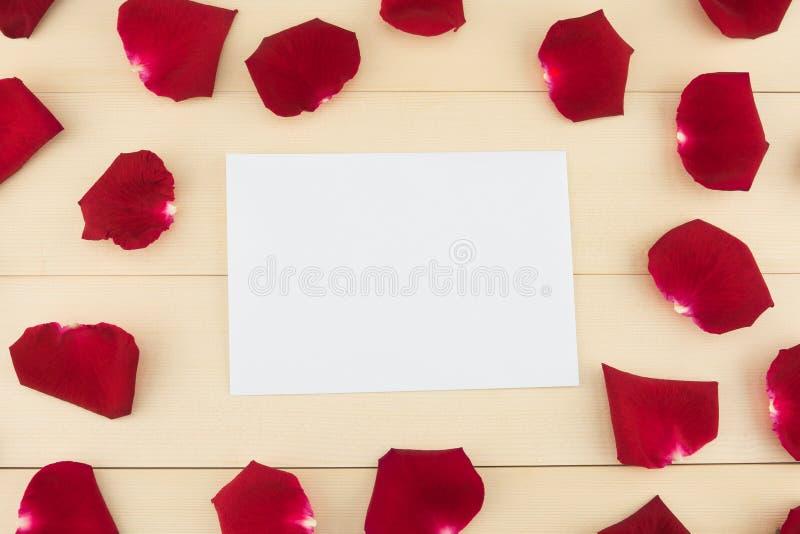 Vitt tomt kort med röda roskronblad royaltyfri bild