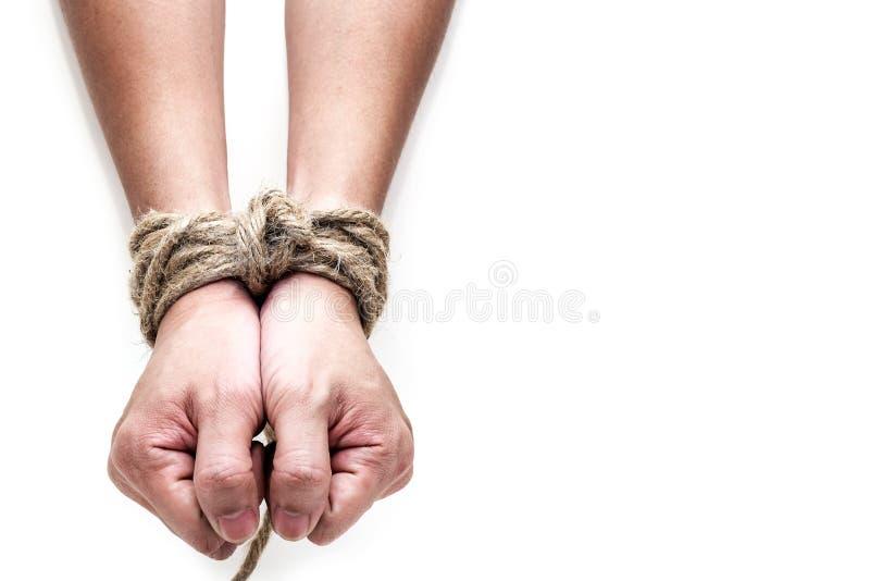 Vittima, schiavo, mani maschii del prosoner legate dalla grande corda fotografia stock libera da diritti