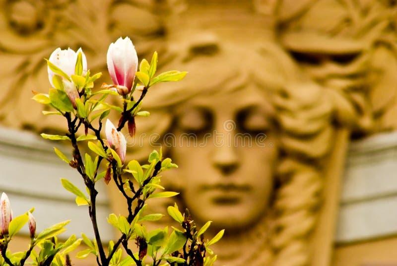 vitus st весны prague собора Чехия стоковая фотография rf