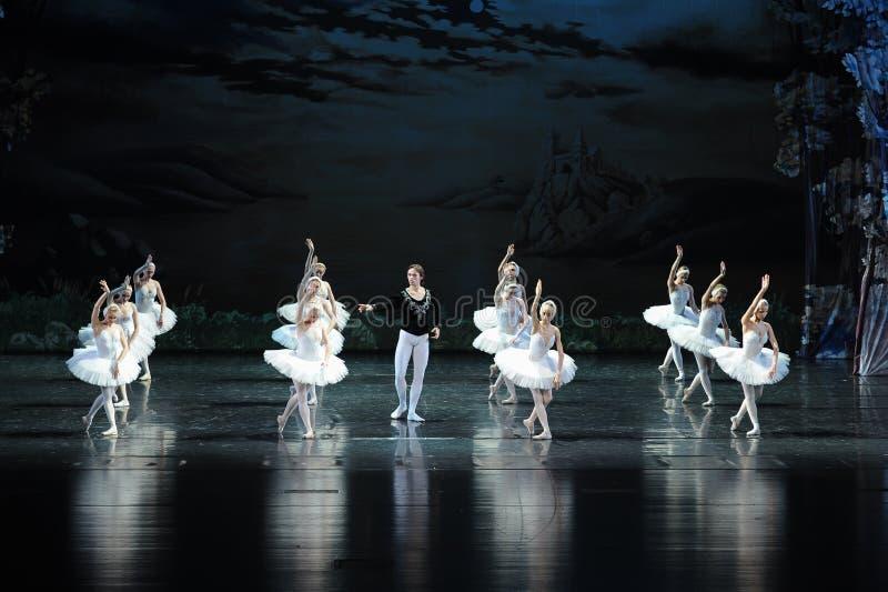 Viu um cisne-bailado branco O Lago das Cisnes imagens de stock royalty free