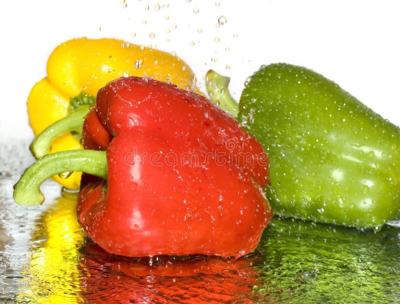 vivacité au-dessus de blanc de paprika image stock