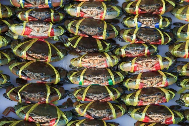 Viven los cangrejos listos para ser cocinado en un mercado fotos de archivo