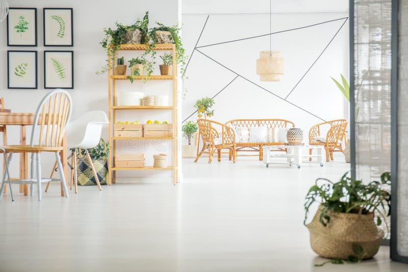 Vivendo e sala da pranzo con le piante fotografia stock libera da diritti