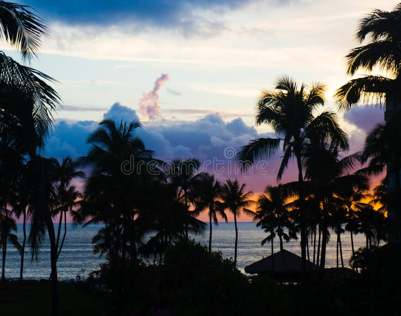 Oahu Beach at Sunset with Palms and Clouds stock images