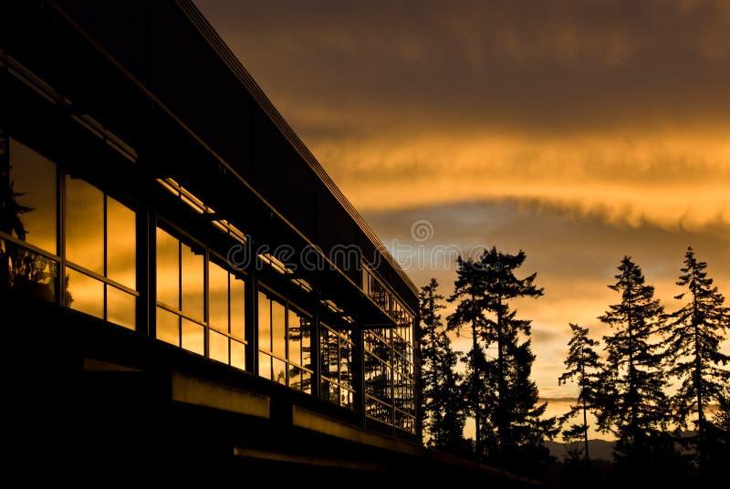 Vivid sunrise royalty free stock images