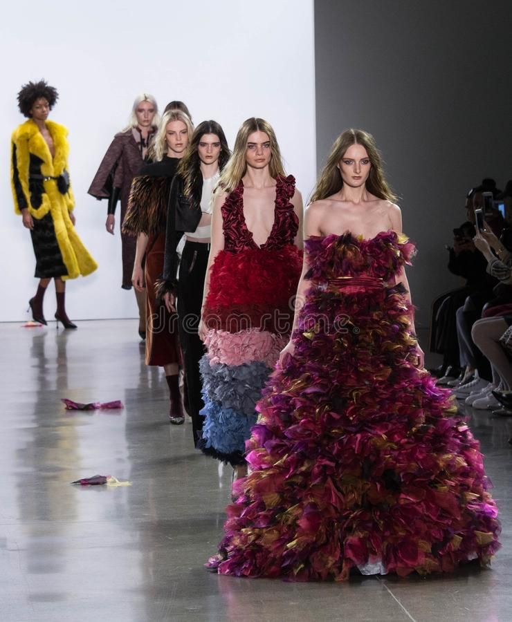 Vivienne Hu Fall /Winter samling under New York modevecka royaltyfria foton