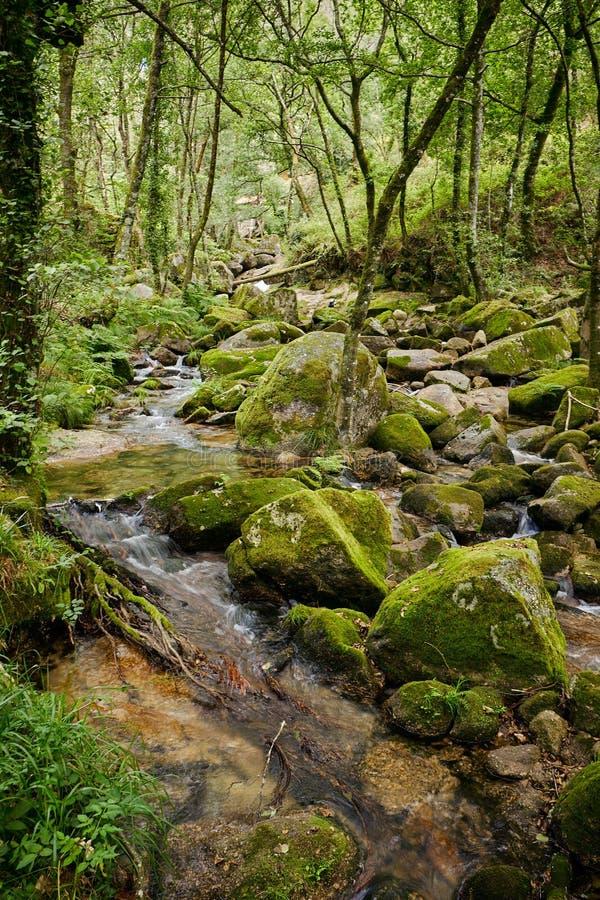 Vizela river Pontido royalty free stock photos
