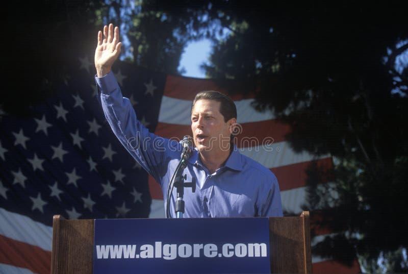 Vizepräsident Al Gore kämpft für die demokratische Ernennung zum Präsidenten an Lakewood-Park in Sunnyvale, Kalifornien lizenzfreies stockfoto