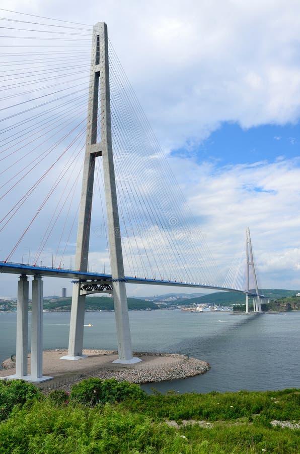 Vladivostok, Rússia, ponte cabo-ficada à ilha do russo imagens de stock royalty free