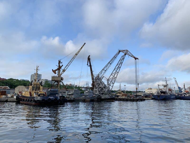 Vladivostok Ryssland, 08 06 2019 Hamnstad i sommarmorgon på Churkin udde i Vladivostok royaltyfri fotografi