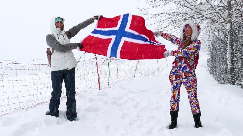 Vlag die van Noorwegen in de wind golft stock afbeelding