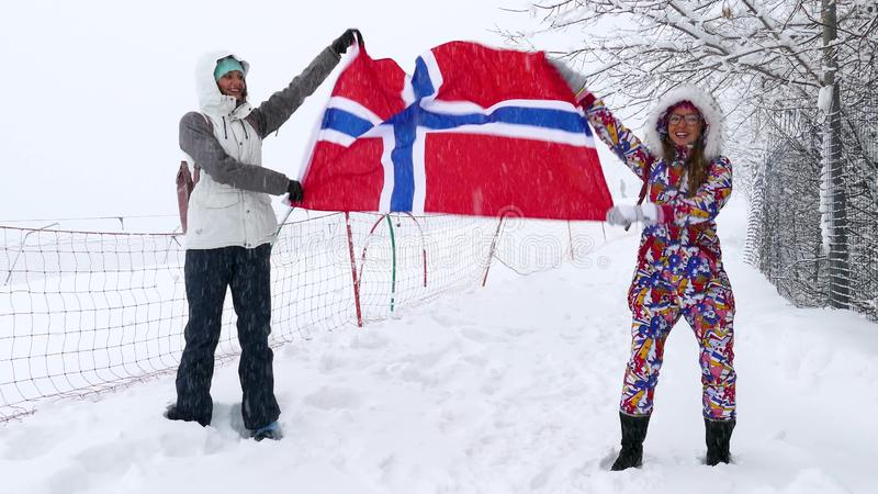 Vlag die van Noorwegen in de wind golft stock foto's