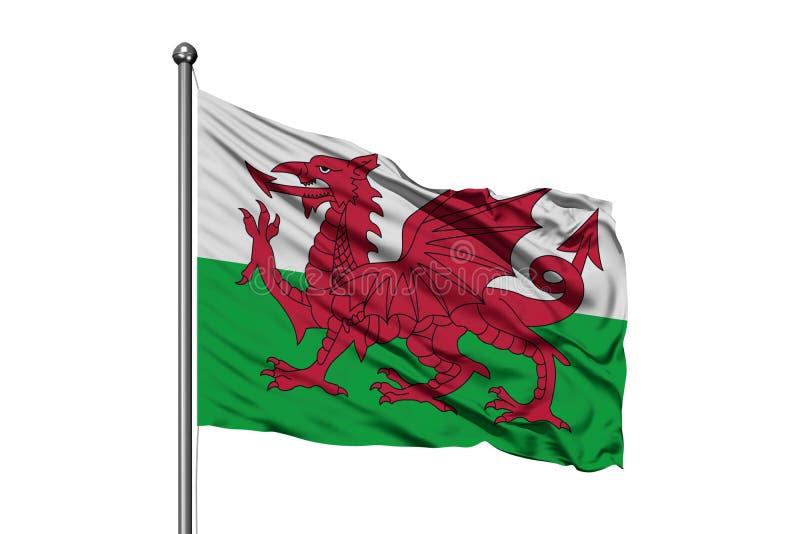 Vlag die van Wales in de wind, ge?soleerde witte achtergrond golven Welse vlag royalty-vrije stock foto's