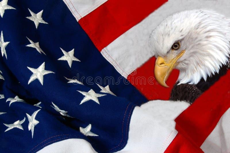 Vlag en adelaar stock afbeeldingen