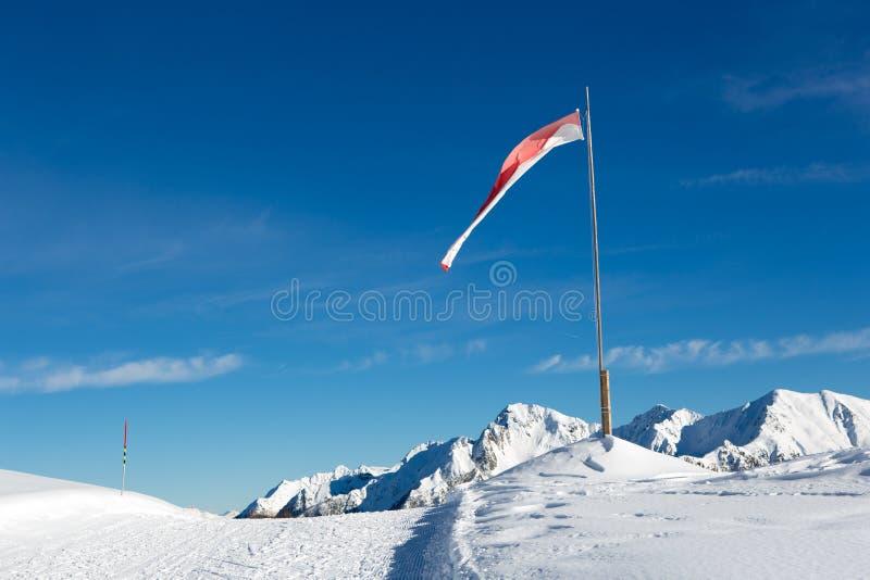 Vlag het vliegen royalty-vrije stock foto