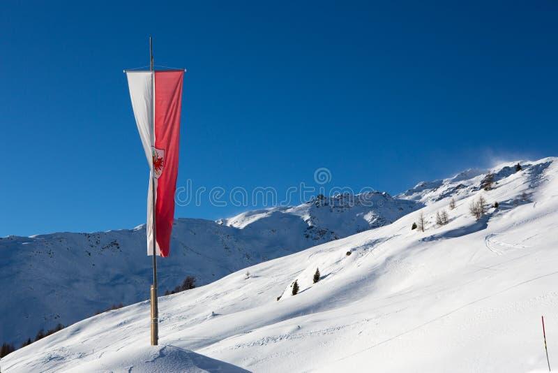 Vlag het vliegen stock afbeelding
