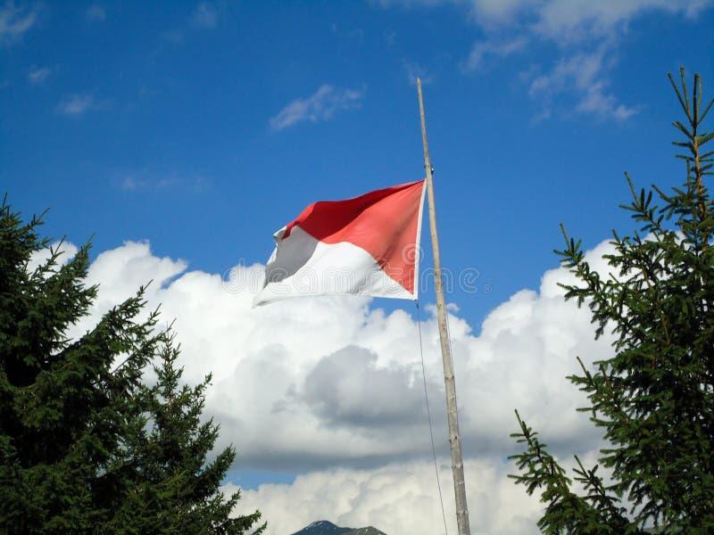 Vlag op hemel stock afbeelding