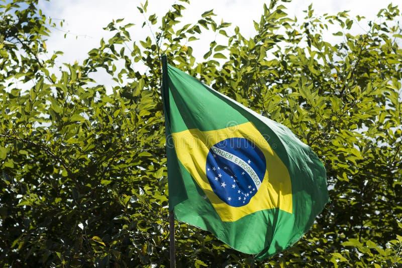 Vlag van Brazilië in de wind stock foto's