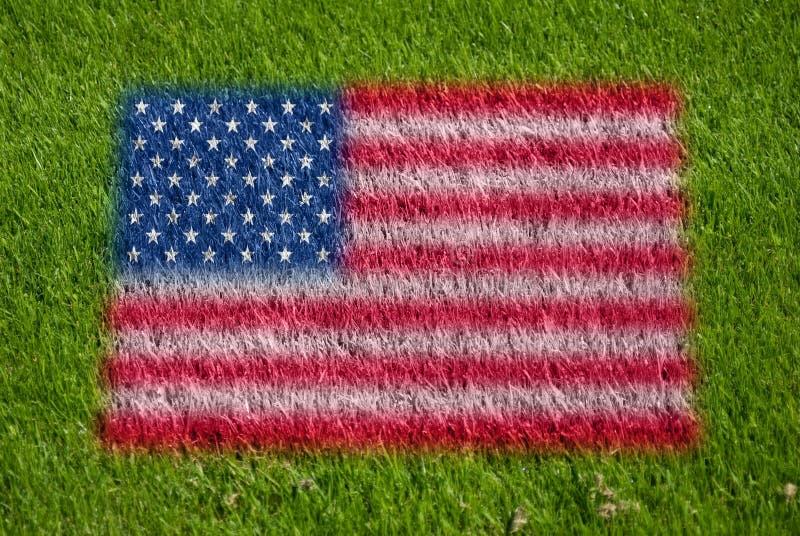 Vlag van de V.S. op gras stock foto